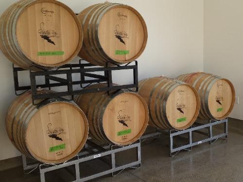 wine barrels - malolactic fermentation
