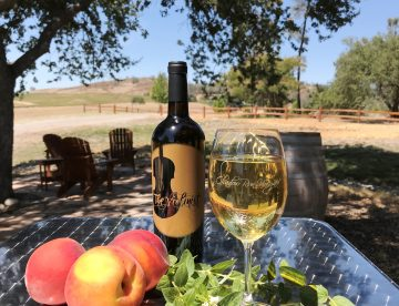 Violinist Viognier from Shadow Run Vineyards & Winery - Paso Robles